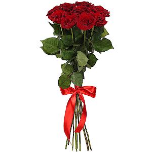 Букет из 9 красных роз — премиум