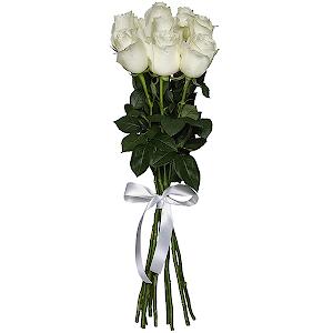 Букет из 9 белых роз — премиум